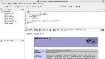 php_info.jpg