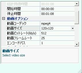 anyVideoConverter_size_03..jpg
